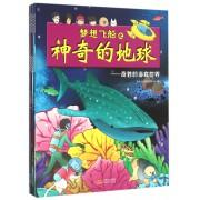 梦想飞船之神奇的地球(共6册)