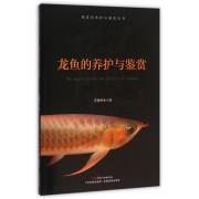 龙鱼的养护与鉴赏/观赏鱼养护与鉴赏丛书