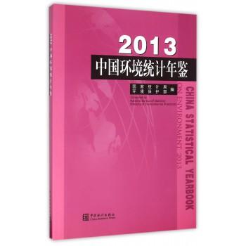 中国环境统计年鉴(2013)