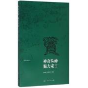神奇珠峰魅力定日/西藏文化旅游丛书