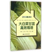大白菜甘蓝高效栽培/现代农业关键创新技术丛书