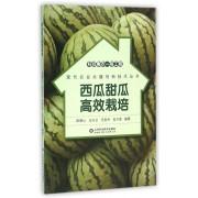 西瓜甜瓜高效栽培/现代农业关键创新技术丛书
