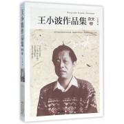 王小波作品集(杂文卷)