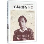 王小波作品集(小说卷)