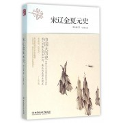 宋辽金夏元史/中国大历史