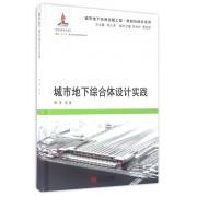 城市地下综合体设计实践(精)/城市地下空间出版工程规划与设计系列