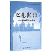 巴基斯坦--驶向蓝海的旗舰/中国亚非发展交流协会国际问题研究丛书