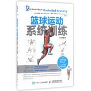 篮球运动系统训练(全彩图解版)/体育运动训练丛书