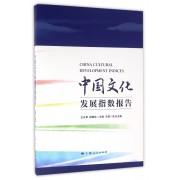 中国文化发展指数报告