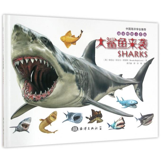 大鲨鱼来袭(精)/海洋怪物小百科
