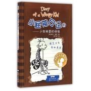 小屁孩日记(14少年格雷的烦恼)
