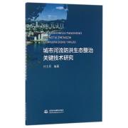 城市河流防洪生态整治关键技术研究