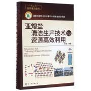 亚熔盐清洁生产技术与资源高效利用(精)
