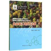 林业碳汇项目方法学/碳汇中国系列丛书