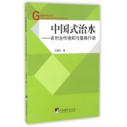 中国式治水--农村合作组织与集体行动/管理学研究丛书