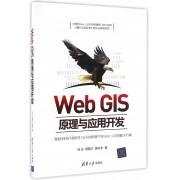 Web GIS原理与应用开发