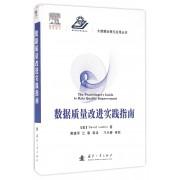 数据质量改进实践指南(精)/大数据治理与应用丛书