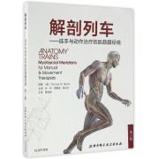 解剖列车--徒手与动作治疗的肌筋膜经线(第3版)