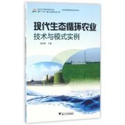 现代生态循环农业技术与模式实例/社会主义新农村建设书系