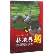 林地养鹅疾病防治技术