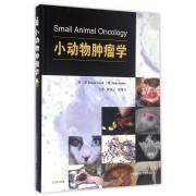 小动物肿瘤学(精)