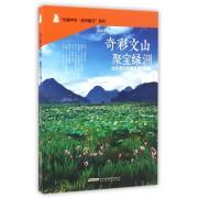 奇彩文山聚宝绿洲/光耀中华城市散文系列