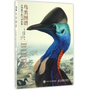 鸟类图谱(大师笔下的飞羽世界)