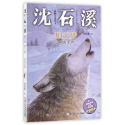 狼王梦(2魂断荒野)/动物小说大王沈石溪注音读本