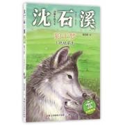 狼王梦(1绝境重生)/动物小说大王沈石溪注音读本