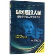 爱因斯坦大脑(揭秘奇特的人类大脑之谜五星推荐典藏版)