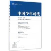 中国少年司法(2016.2总第28辑)