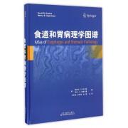 食道和胃病理学图谱(精)