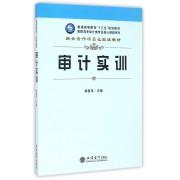审计实训/高职高专会计类专业核心课程系列