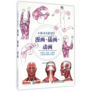 人体动态解剖学(漫画插画动画)