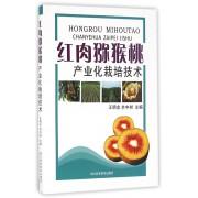 红肉猕猴桃产业化栽培技术