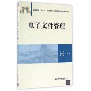 电子文件管理(普通高校十三五规划教材)/信息管理与信息系统系列