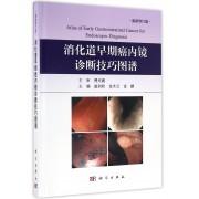 消化道早期癌内镜诊断技巧图谱(最新修订版)(精)