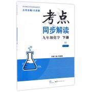九年级化学(下RJ第3版新课标)/考点同步解读