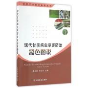 现代甘蔗病虫草害防治彩色图说/甘蔗产业技术体系丛书