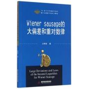 Wiener sausage的大偏差和重对数律/数学与应用数学学术文库/双一流大学学科建设学术文库