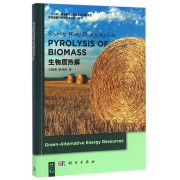 生物质热解/绿色能源科学与技术丛书