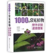 1000种常见植物野外识别速查图鉴(精)