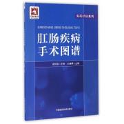 肛肠疾病手术图谱/安氏疗法系列