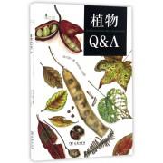 植物Q & A/自然观察