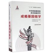 成瘾基因组学(精)/中华民族基因组多态现象研究