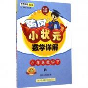 六年级数学(下R)/黄冈小状元数学详解