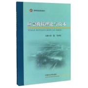 应急救援理论与技术(高等院校规划教材)