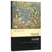 文化政策/全球文化系列/当代学术棱镜译丛