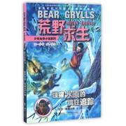 狼獾冰原的疯狂追踪/荒野求生少年生存小说系列