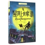 屋顶上的索菲/长青藤国际大奖小说书系